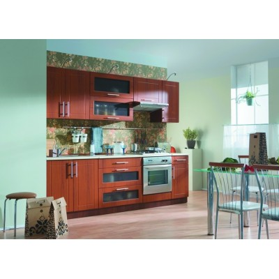 Virtuve 64